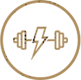 Personalized Fitness Programs